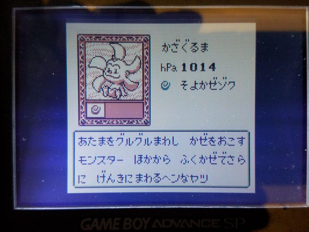 koukatsu-boy-11