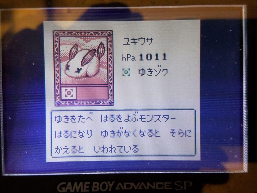 koukatsu-boy-14
